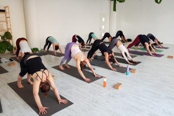 Yoga voor groepen - privé